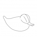 gift-duck-large